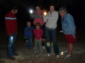 Participants watching a garden orb weaver making a web